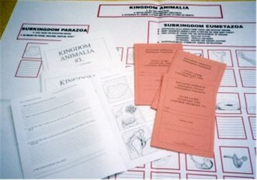 WORK CHART & BOOKLETS - Animalia ● CL-650-A-B-C