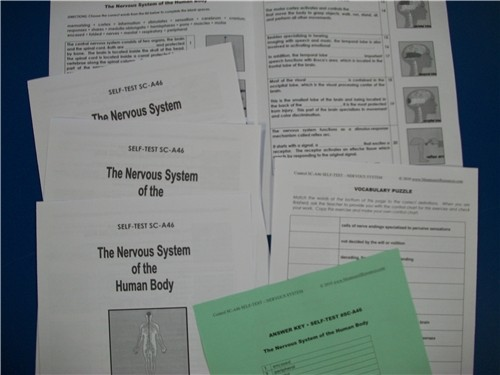 SELF-TEST - NERVOUS SYSTEM ● SC-A46 SELF-TEST