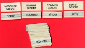 STUDY OF THE GENDER OF NOUNS ● S-130