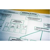 PLANTAE Working Chart only ● CL-640-A
