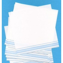 BLANK 5.5 PAPER WITH BLUE SHADED LINE ● F-704