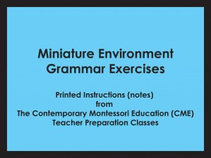 Miniature Environment - Grammar Exercises (CME notes) ● LANG-CME-065