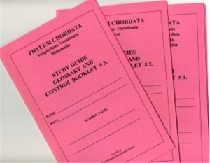 CHORDATA Set of 3 Study Guide Booklets only ● CL-651-B