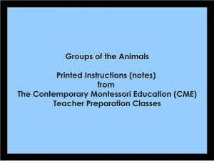 Groups of the Animals (CME notes) ● LANG-CME-S-133