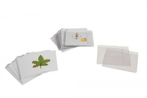 Third Set of Botany Cards/019700       NH-216   ■SOLD OUT■QUOTE REQUIRED■