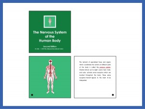 The Nervous System of the Human Body (Second Edition)