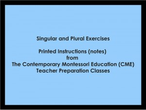 Singular and Plural Exercises (CME notes) ● LANG-CME-S-122