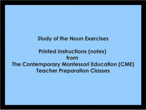 Study of the Noun Exercises (CME notes) ● LANG-CME-S-124